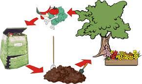 ciclocompost