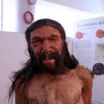 L'uomo di Altamura nella ricostruzione a grandezza naturale realizzata sulla base di una analisi rigorosamente scientifica dai paleo-artisti olandesi Adrie e Alfons Kennis, fra i più qualificati al mondo in ricostruzioni paleoantropologiche, nelle quali si combinano dati scientifici e interpretazione artistica. Lo scheletro dell'uomo di Altamura fu ritrovato oltre 20 anni fa nella grotta di Lamalunga: si tratta, secondo studi compiuti, di un antico Neanderthal, la specie umana estinta vissuta in tutta Europa tra almeno 200mila e circa 40mila anni fa. Roma, 26 aprile 2016. ANSA/ US DIGITARCA +++ NO SALES - EDITORIAL USE ONLY +++